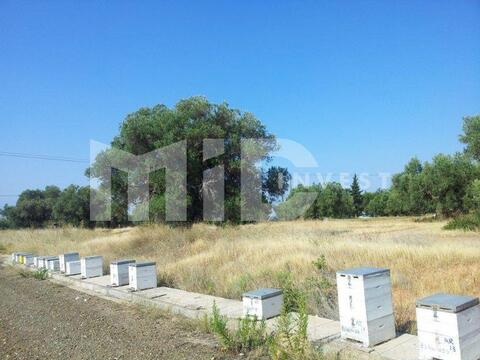 Зем. участок Халкидики Полигирос - Фото 4