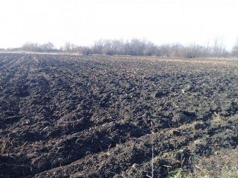 Продается земельный участок Респ Адыгея, Тахтамукайский р-н, СНТ . - Фото 2