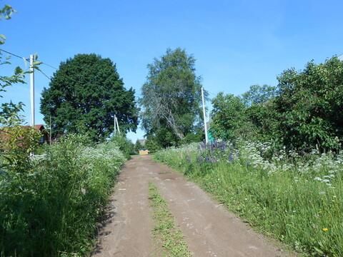 Продажа земельного участка 1,2 га в Валдайском районе, д. Борисово - Фото 4