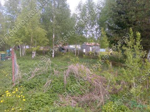 Ленинградское ш. 100 км от МКАД, Селихово, Участок 8 сот. - Фото 2