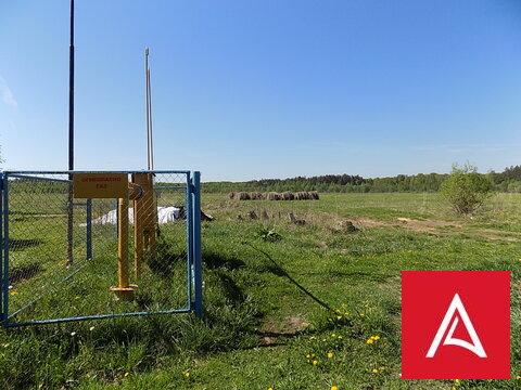 Участок ЛПХ 5,47 га у реки Волга, дер. Алексино, Калязинский р-н - Фото 1