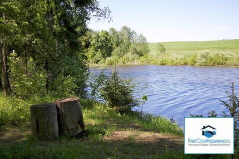Лесной участок на первой линии водохранилища - Фото 5