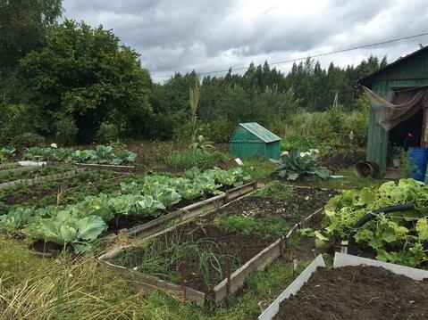 Продается дачка с огородом в СНТ в 15 минутах ходьбы от р. Волга - Фото 3
