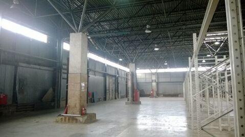 Сдам складское помещение 5997 кв.м, м. Купчино - Фото 3