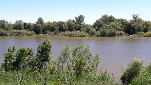 Продам жилой дом на берегу р. Иргиз в с. Кормежка - Фото 2