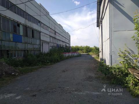 Производственное помещение в Курганская область, Курган просп. . - Фото 2