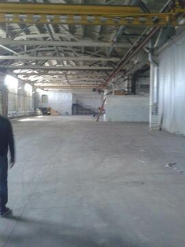Помещение под склад 1200 кв.м с авто и ж/д пандусом - Фото 3
