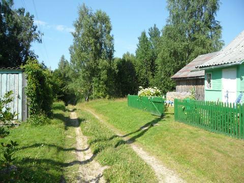 Крепкий дом рядом с рекой и сосновым лесом - Фото 4
