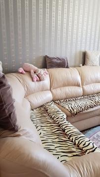 Продажа квартиры, Люберцы, Люберецкий район, Дружбы - Фото 4