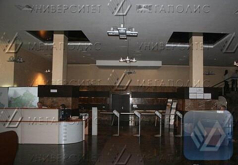 Сдам офис 370 кв.м, бизнес-центр класса B+ «Виктория Плаза» - Фото 4