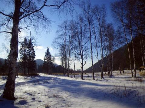 Земельный участок в поселке Листвянка - Фото 2