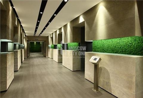 155,3 м2 14 этаж Офис в Башне Федерация Восток - Фото 5