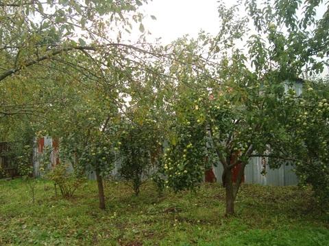 Продам дом в поселке куйбышева - Фото 4