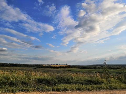 Продаётся земельный участок 10 сот. с лесными деревьями -35 км от МКАД - Фото 5