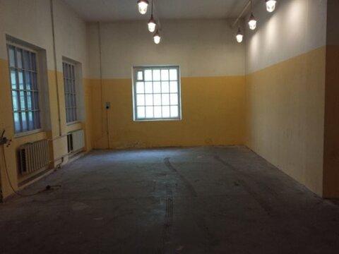 Сдам производственное помещение 560 кв.м, м. Черная речка - Фото 5