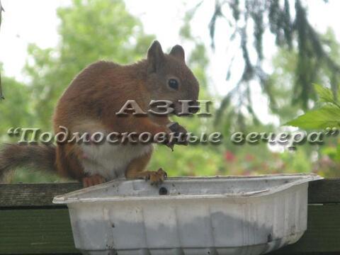 Дмитровское ш. 32 км от МКАД, Икша, Дом 165 кв. м - Фото 5