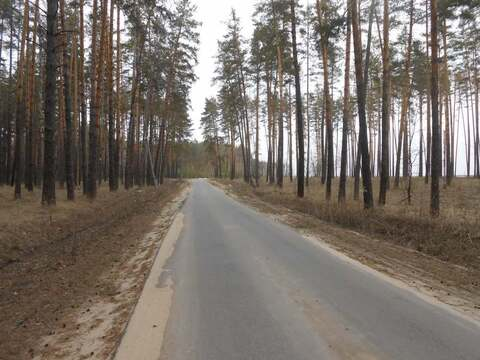 Продажа участка, Чертовицы, Рамонский район - Фото 4