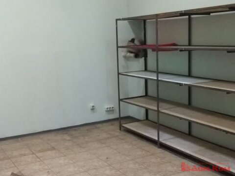 Аренда торгового помещения, Хабаровск, Ул. Лазо 2д - Фото 4