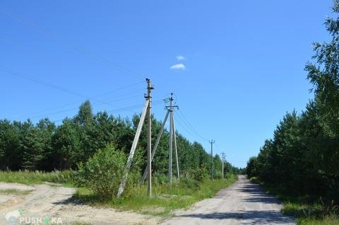 Продажа участка, Малое Полпино, Брянский район - Фото 3