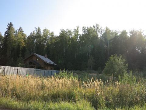 Лесной участок 20 сот. с газом и идеальным подъездом. - Фото 1