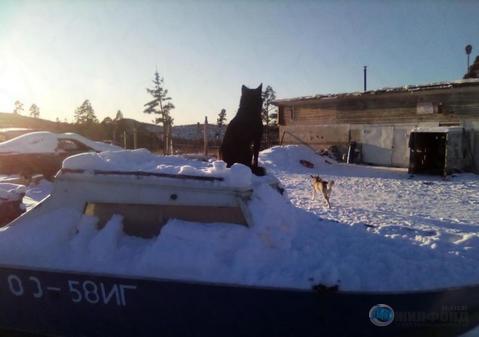 Продажа гаража, Усть-Илимск, Братское шоссе - Фото 1