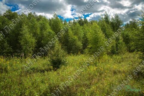 Калужское ш. 57 км от МКАД, Тюфанка, Участок 33.5 сот. - Фото 2