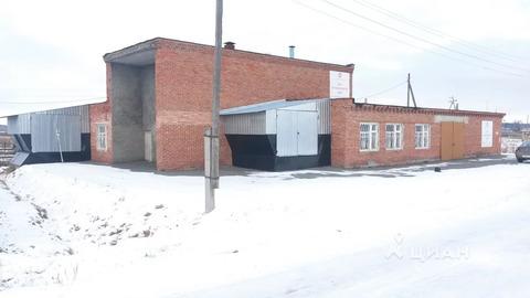 Производственное помещение в Тюменская область, Исетский район, с. . - Фото 1
