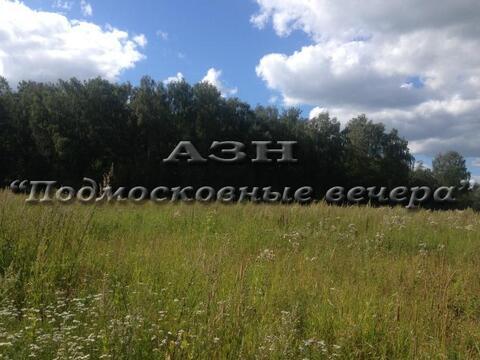 Дмитровское ш. 40 км от МКАД, Данилиха, Участок 25 сот. - Фото 3
