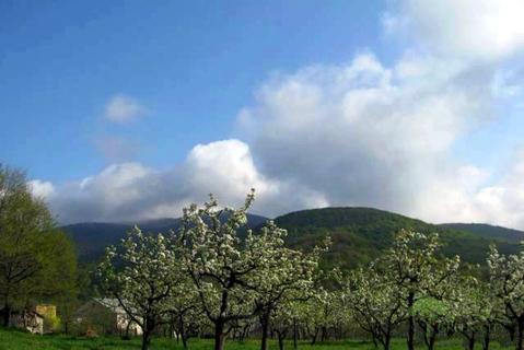 Земельный участок в уникальном месте Крыма - Фото 2