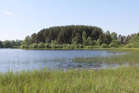 Участок на озере - Фото 1