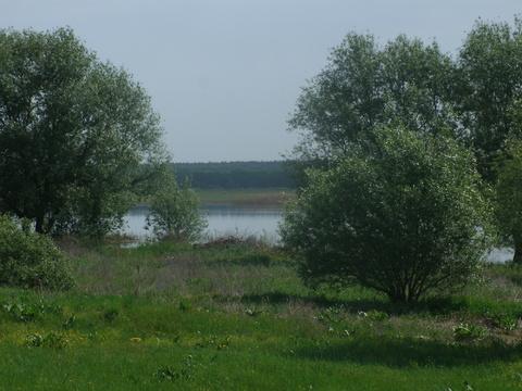 Прдается земельный участок в Вербилово, ул.Советская-Калинина - Фото 4
