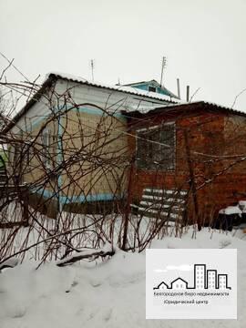 Продажа дома в Яковлевском районе с. Стрелецкое - Фото 1