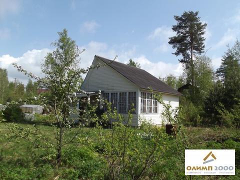 Дача 70 кв.м. в Белоострове - Фото 2