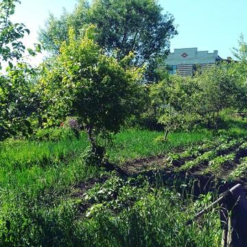 Продаю земельный участок в Шербаши Моргаушского района - Фото 4