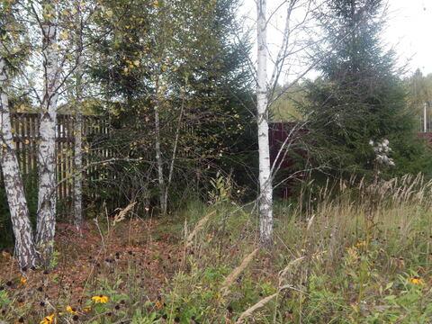 Дача 45 кв м на участке 10 сот в лесу по Минскому ш. близ д. Шаликово. - Фото 4
