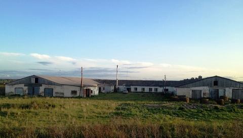 Продам ферму - Фото 1