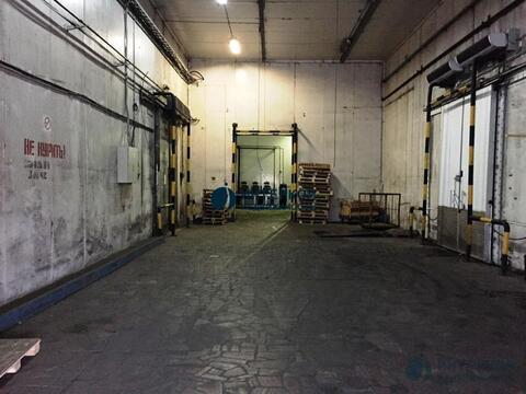 1255 м2 под склад/производство - Фото 4