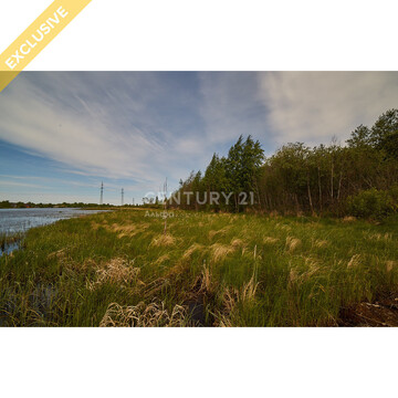 Продажа земельного участка 14 соток на первой береговой линии реки Шуя - Фото 4