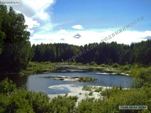 Продается земельный участок (база отдыха) на берегу Ижевского п - Фото 1