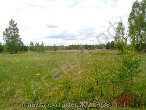 Продажа участка, Слопыгино, Палкинский район - Фото 1