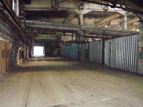 Сдам производственное помещение 1200 кв.м, м. Купчино - Фото 2