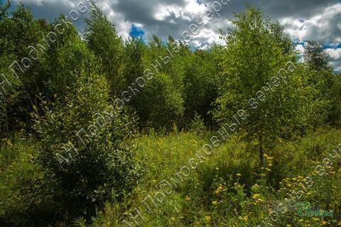 Калужское ш. 57 км от МКАД, Тюфанка, Участок 33.5 сот. - Фото 3