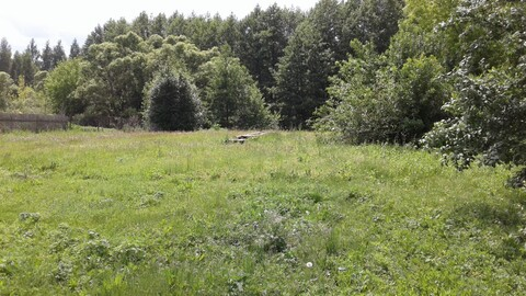 Продается земельный участок в с. Борисовка - Фото 5