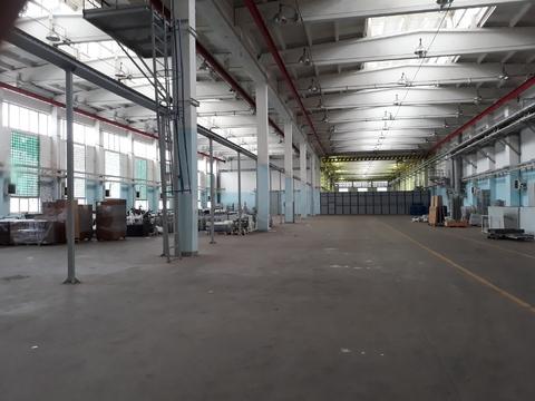 Аренда производственно-складского помещения - Фото 1