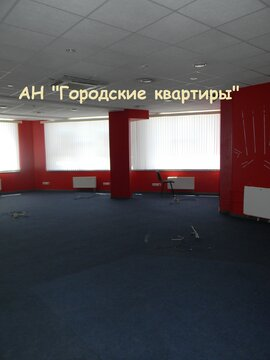 Псн 118 кв.м. в Химках у ж/д станции - Фото 3