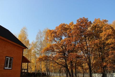 Дом с Газом, 16 соток, Лес, д.Храпки - Фото 3
