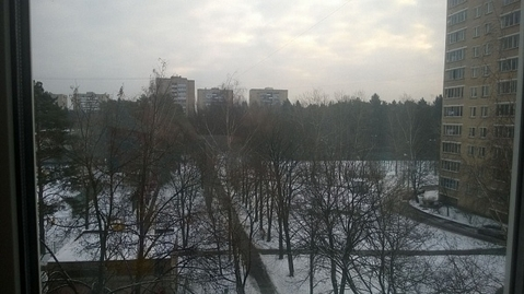Продажа квартиры, Зеленоград, к505 - Фото 2