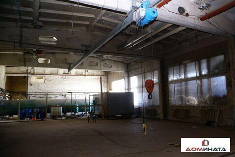 Аренда производственного помещения, Гатчина, Гатчинский район, Ул. . - Фото 2