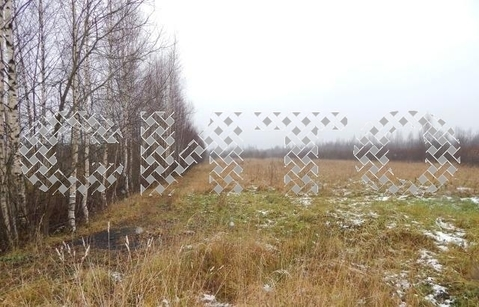 Продажа участка, Нова, Череповецкий район - Фото 1