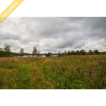 Продажа земельного участка 1,25 Га в д. Гомсельга на 1 береговой линии - Фото 3